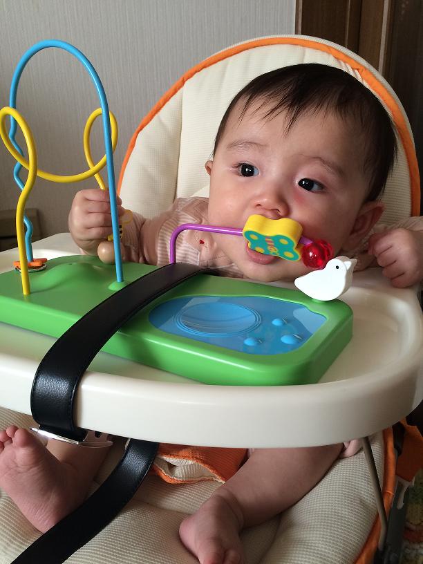 【4月生まれ】こどもちゃれんじベビーを1歳11ヶ月号まで使ったレビュー